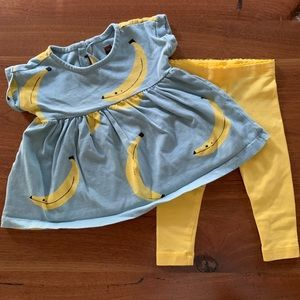 Tea Collection Dress and Leggings Size 3-6 months